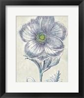 Framed Belle Fleur II Crop