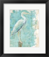 Framed Coastal Egret I