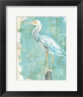 Framed Coastal Egret II