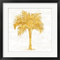 Framed Palm Coast IV on White