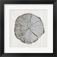 Framed Woodland Years I with Silver