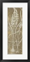 Framed Flower Lines III