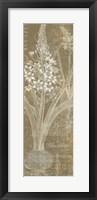 Framed Flower Lines II