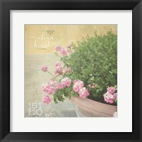 Framed Geraniums I