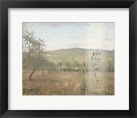 Framed Jeremiah Olive Grove II