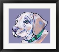 Framed Puppy II