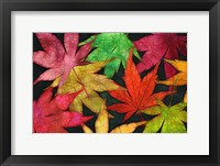 Framed Autumn Leaves II