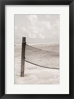 Framed Volleyball Net