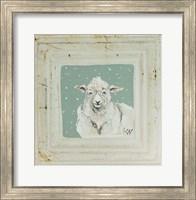 Framed White Sheep