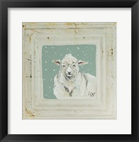 White Sheep Framed Print