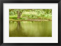 Framed Place of Peace I