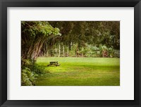 Framed Place of Peace II