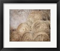 Framed Round Bales