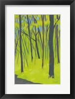 Framed Spring Woods