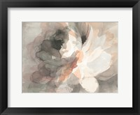 Framed Abstract Peony