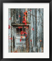 Framed Rustic Autumn