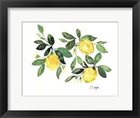 Framed Lemons and Leaves