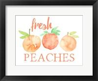 Framed Fresh Peaches II