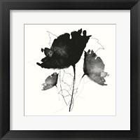 Framed B&W Floral II