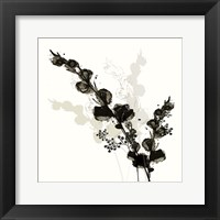 Framed B&W Floral III