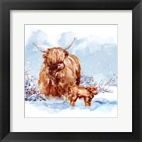 Framed Highland Cow & Calf