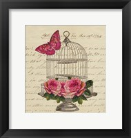 Framed Birdcage and Butterfly