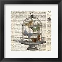 Framed Butterflies in Birdcage