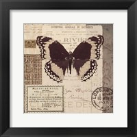 Framed Butterfly Stamp