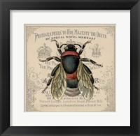 Framed Red Bee
