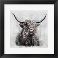 Framed Highlander