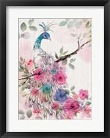 Framed Peacock Floral