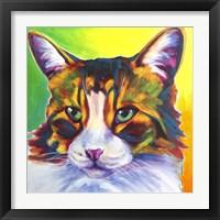 Framed Cat - Tabby