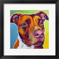 Framed Pit Bull - Red