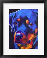 Framed Rottie - Dexter