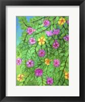 Framed Colorful Spring
