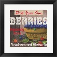 Framed Berries