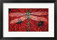 Framed Dragonfly And Poppies