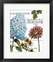 Framed Botanical Postcard Color I