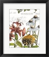 Botanical Postcard Color II Framed Print