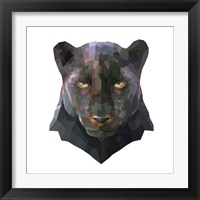 Framed Panther