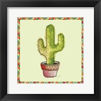 Framed Rainbow Cactus II