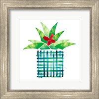 Framed Colorful Cactus III