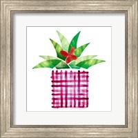 Framed Colorful Cactus V