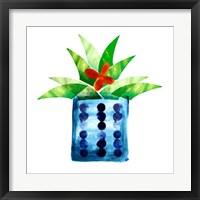 Framed Colorful Cactus VII