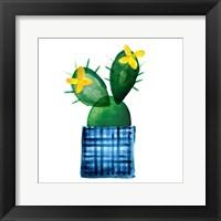 Framed Colorful Cactus VIII