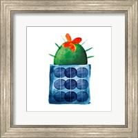 Framed Colorful Cactus VIIII