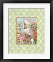 Framed Cockatiel Beauty  -  A  -  Green