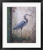 Framed In The Reeds - Blue Heron