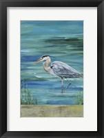 Framed Great Blue - Heron - 1