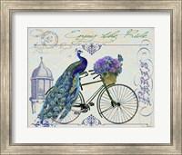 Framed Peacock On Bicylce I